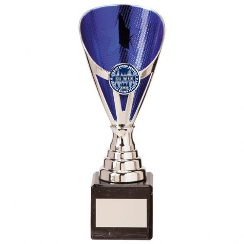 Rising Stars Premium Plastic Trophy Silver & Blue 200mm